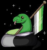 Aromantic Snake and Flag