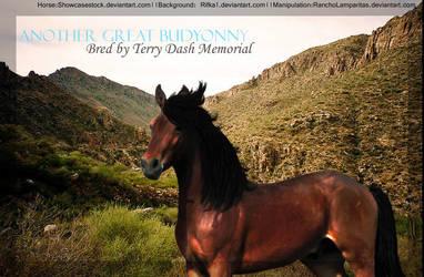 Terry Dash Memorial by RanchoLamparitas
