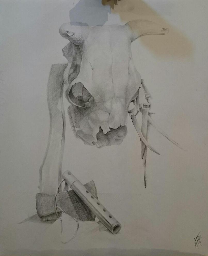 Cow skull by NastyaPronina on DeviantArt