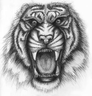 Ballpoint pen Tiger