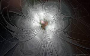 Flower for Debi62