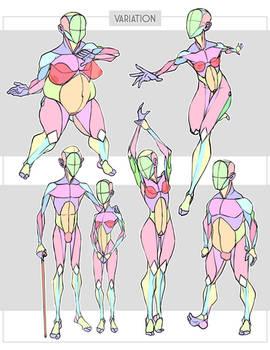 Simplified Anatomy Variations