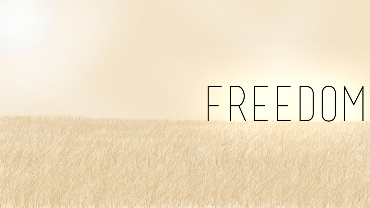 Freedom Wallpaper By TGF2user