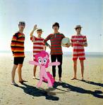 John, Paul, George, Ringo and Pinkie at the beach