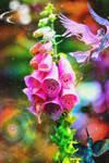 Flower74