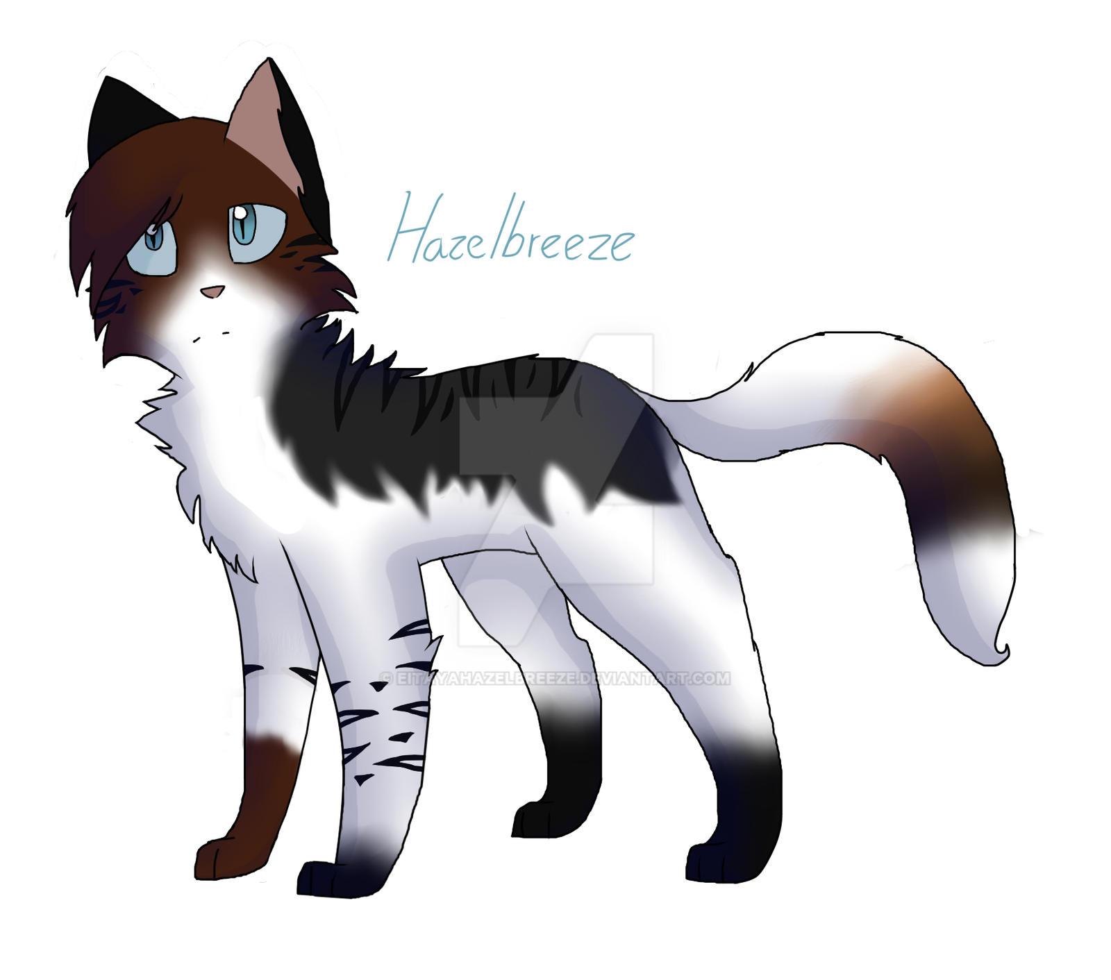 Warriors Medicine Cat