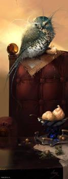 Sir Kurush by anry