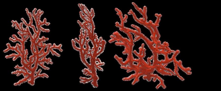 red coral by darkadath...