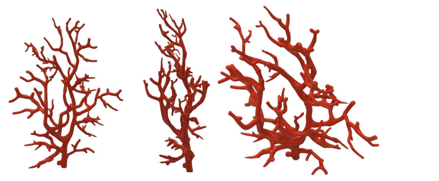 red coral by darkadathea