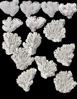 white coral by darkadathea