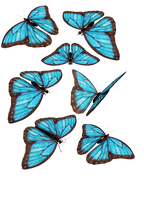 blue butterflies by darkadathea