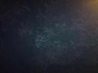 Winter night by KACI88