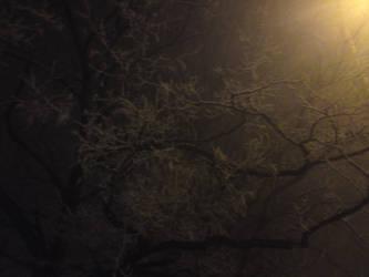 Winter night 2 by KACI88