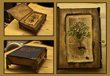 Music Box by hlaurah