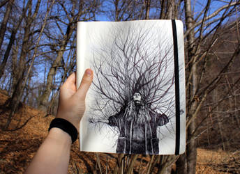 Like a Tree... by KlarEm