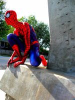 back at my spidey spot  by spidey38