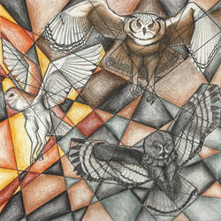 Fractured Owls