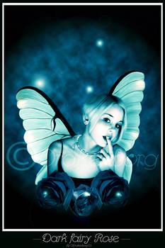 Dark fairy Rose