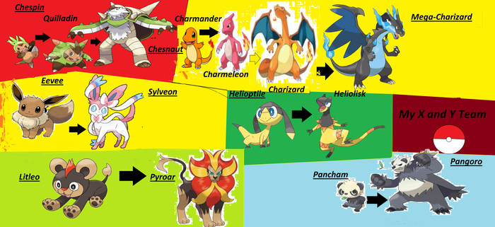 Pokemon X and Y Team