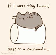 if i were tiny.... by jepwolf2