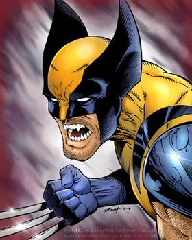 Wolverine - Colors