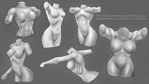 Female Torso Studies - Stylized