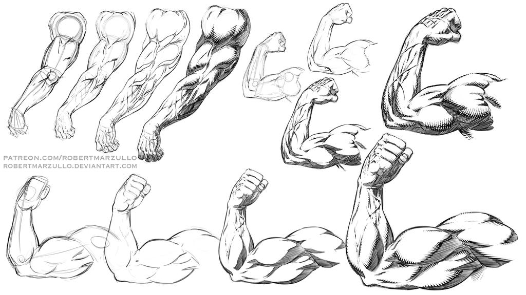 How to Draw and Shade Arms Comic Book Style All Po by robertmarzullo