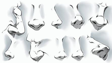 Comic Style Noses - Various Angles