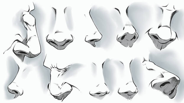 Comic Style Noses - Various Angles by robertmarzullo