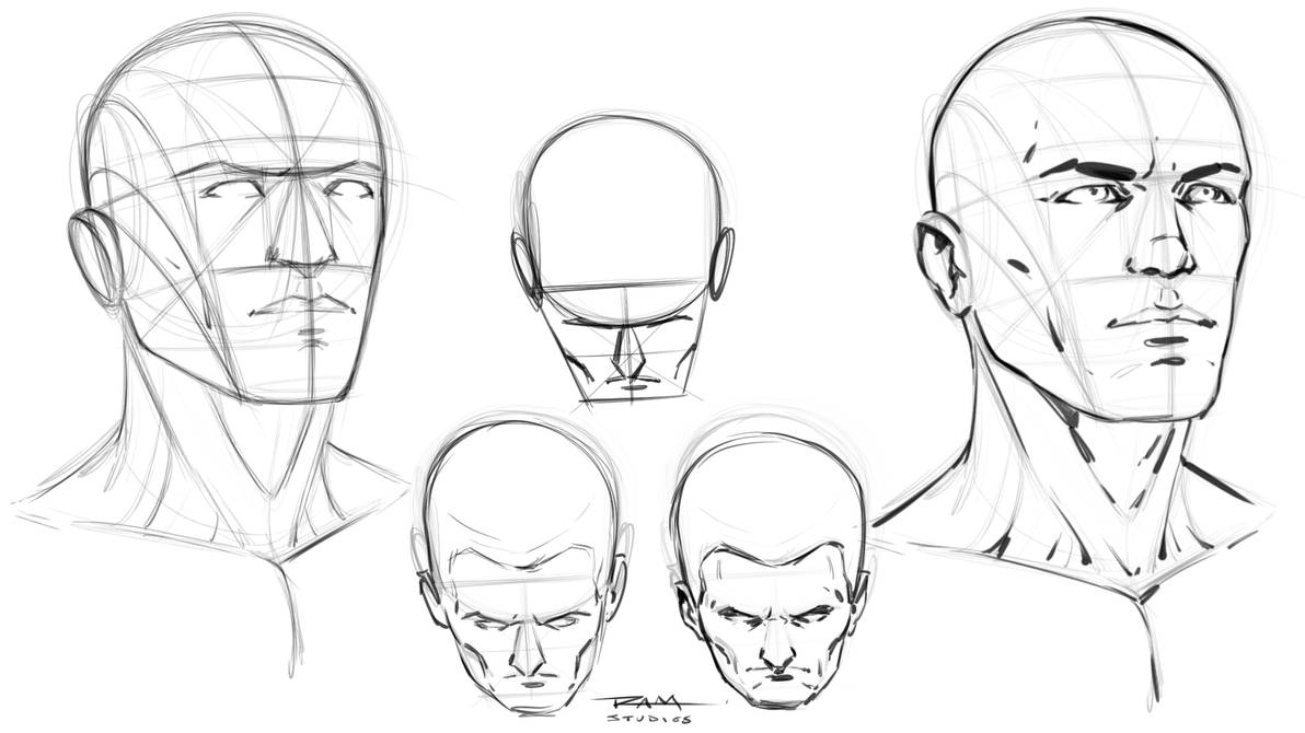 Head Construction Reference by robertmarzullo on DeviantArt