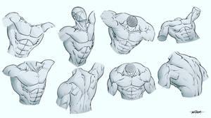 Male Upper Body Drawings