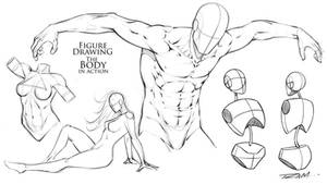 Figure Drawing - The Body in Action