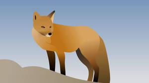 Fox (4K)