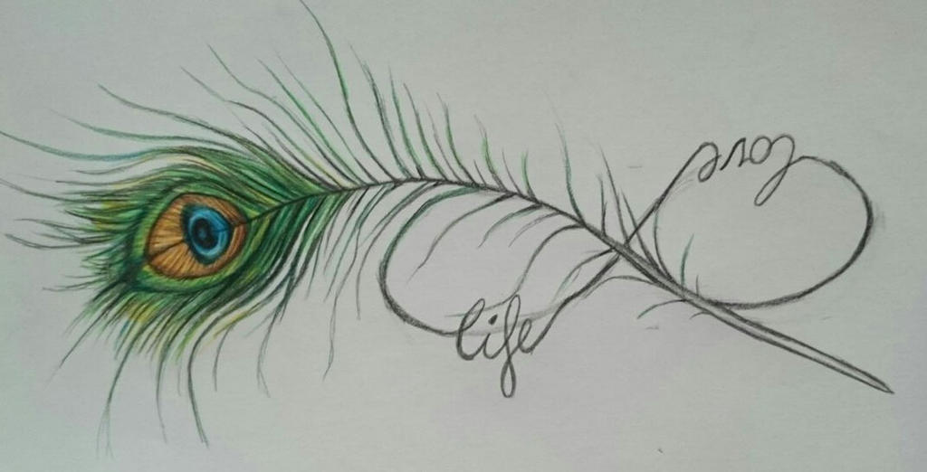 Peacock feather...