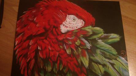 Greenwinged Macaw by Balticdragon