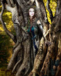Golden Wood Dryad