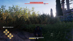 Beneath the Grass