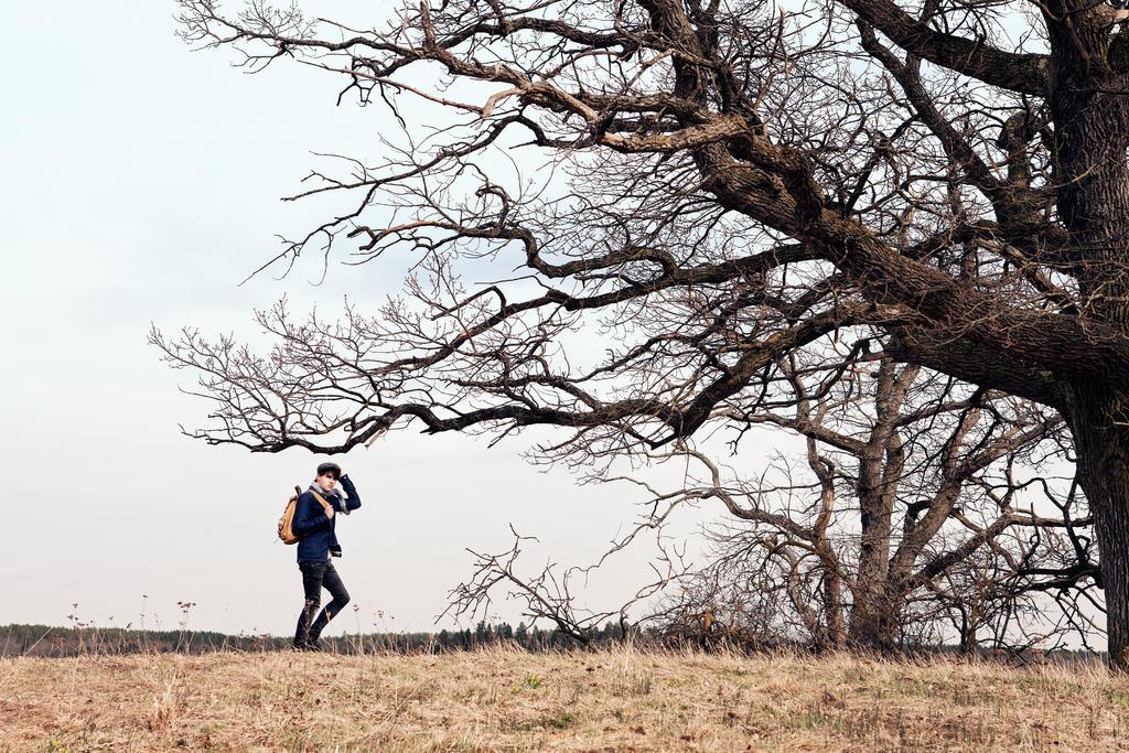 Wanderer I by MarkusOskarsson