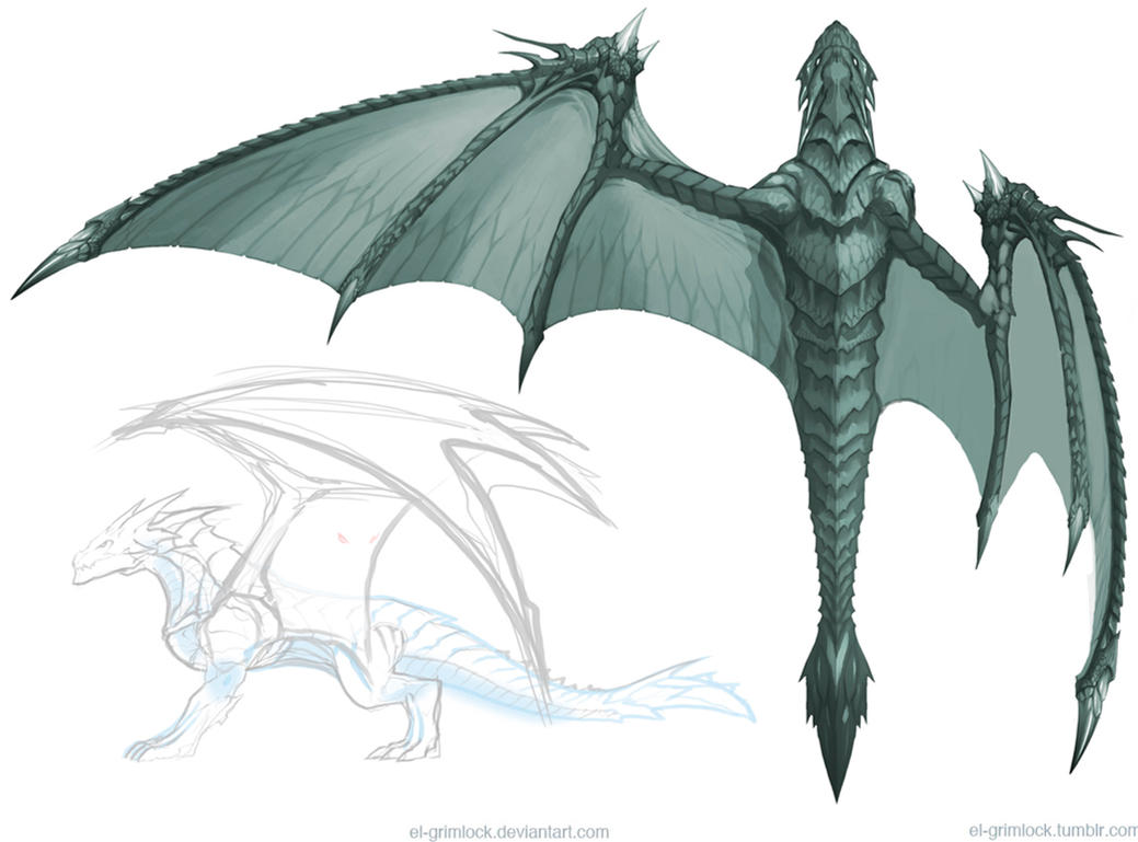 Dragon concept 3 : Wing by el-grimlock