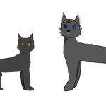 Breezepelt And Crowfeather