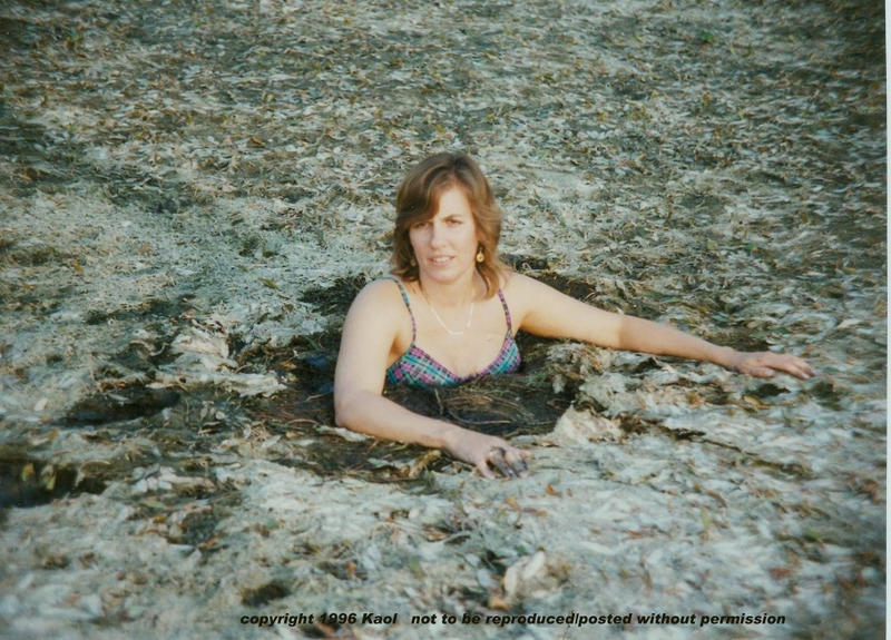 Grassy quicksand II by kaolumbia