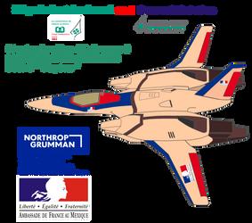 Strategic reconnaissance aircraft  SVR-1 Voyeur