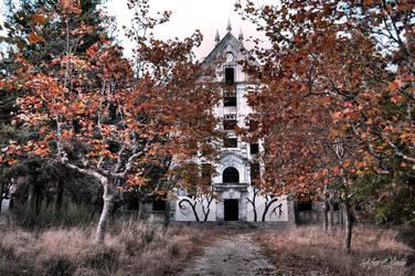 The Asylum by Histeroneurastenia