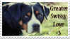 Greater Swissy Love - Stamp by Shenim