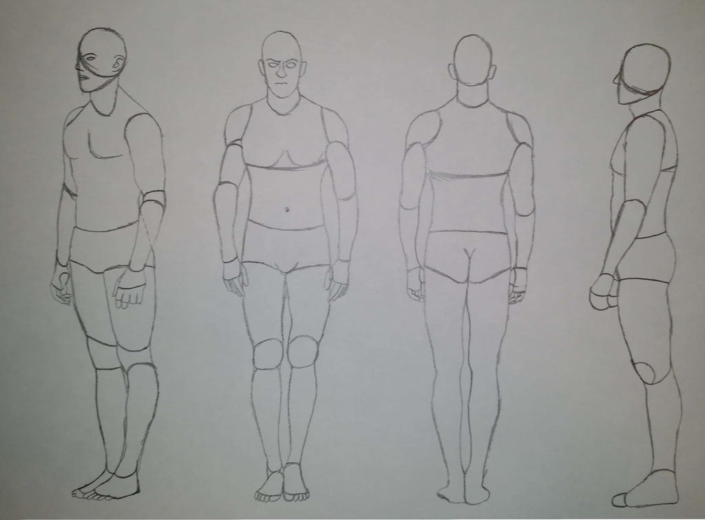 Studying the Shapes of the Body (Male) by KaoticKanine