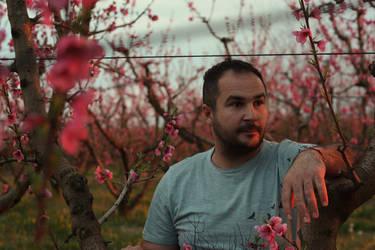 peach by starlit-sky