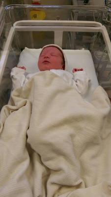 Baby Seth Horwood