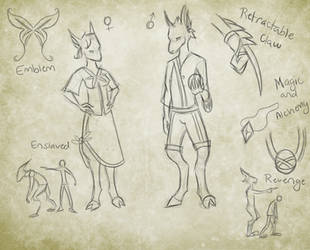 Vykarin Reference Sheet by shiverwings