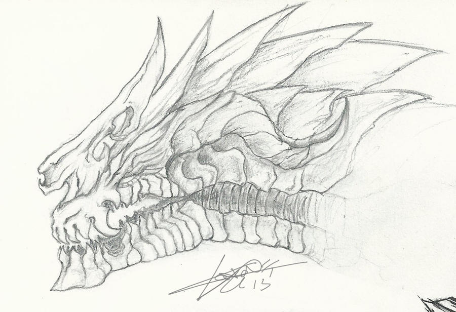 Awesome Dragon Head Drawings Images amp Pictures Becuo