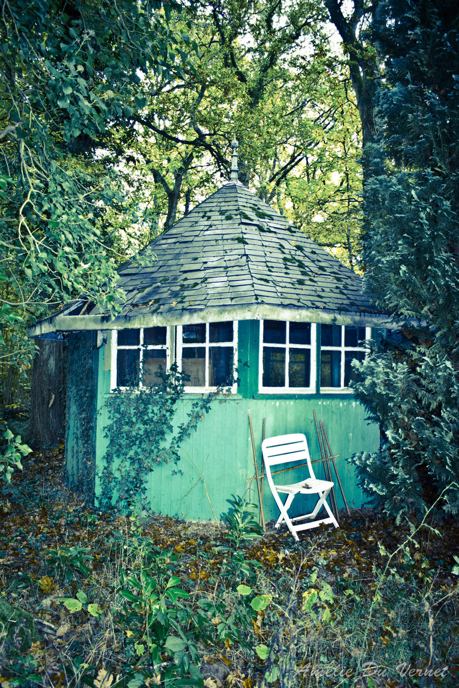 Hut in the woods by adurbex